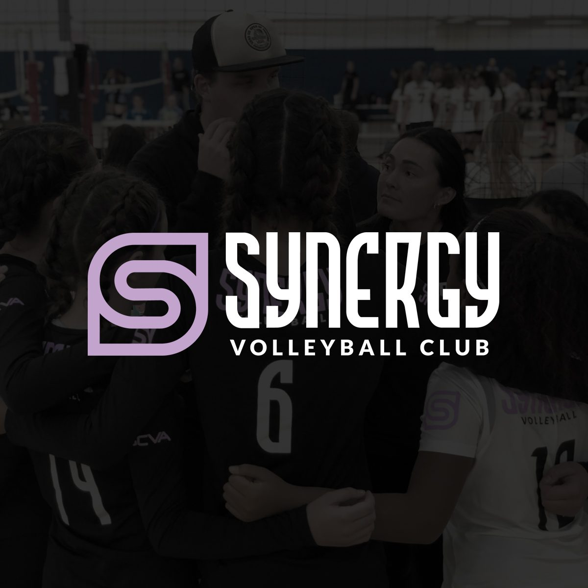 Welcome Synergy Volleyball!
